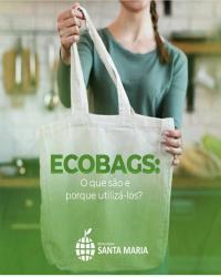 ECOBAGS :O que são e poruqe utiliza-los ?